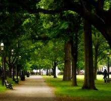 Salem Commons in the Springtime by Monica M. Scanlan