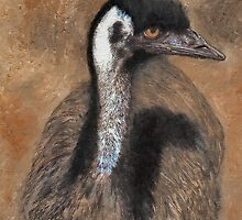 Curious Emu by Julie  Sutherland
