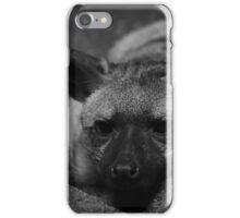 Aardwolf - Cincinnati iPhone Case/Skin
