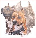 American  Staffordshire Terrier with Ghost Collage by BarbBarcikKeith