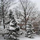 Awe Yes Glorious Snow by Linda Miller Gesualdo