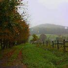 Autumn's Misty Rain by Linda Costello Hinchey