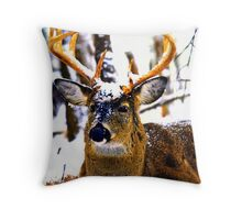Placid Snows 2 Throw Pillow