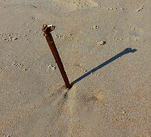 The Sundial by Hope Ledebur