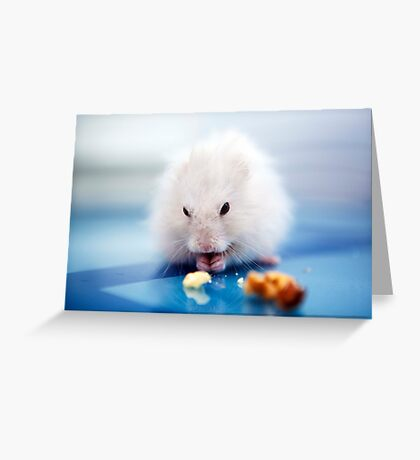 the little hamster Greeting Card