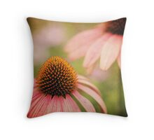 the sun just touched the morning Throw Pillow