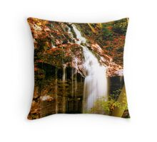 Falls Alight Throw Pillow