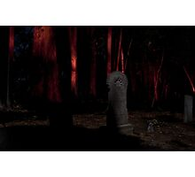 In the Dead of Night Photographic Print