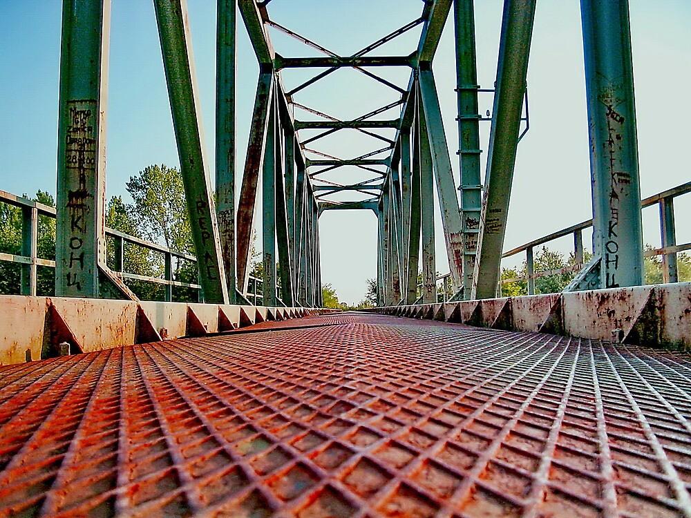 Old Deserted Railway Bridge by robertpatrick