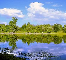 Lake Mirror in the Spring by robertpatrick