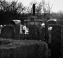 Tractor Gleaming In The Sun by Jeff Golden