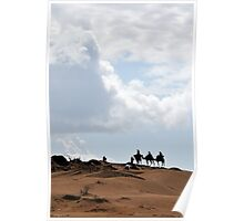 Camels and people on ridge Poster