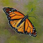 Butterfly on Green and Purple Background by Gayle Utter