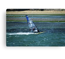 Flying Across Water Canvas Print