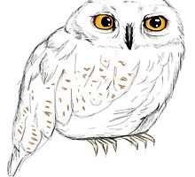 Hedwig by annieclayton