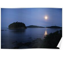 Georgeson Island in the moonlight Poster