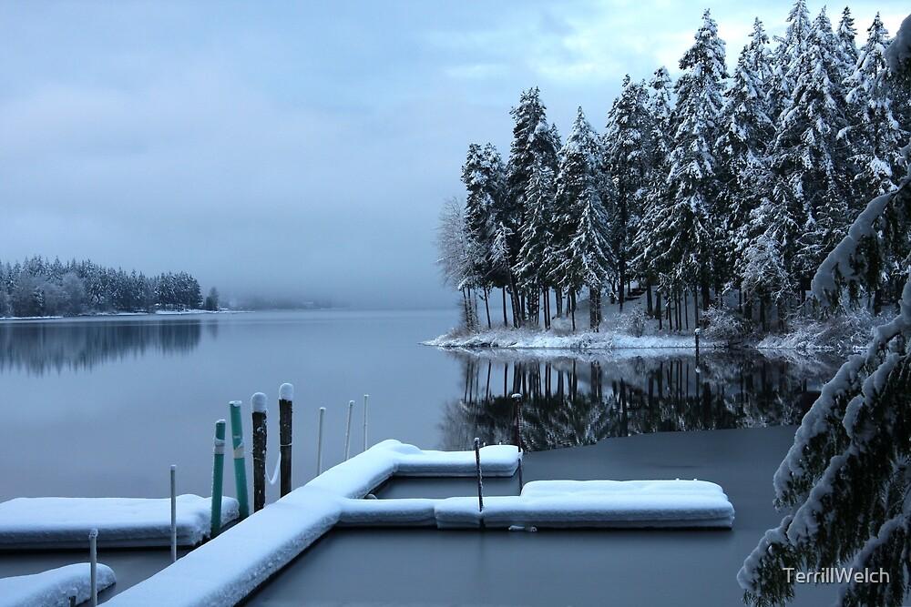Winter reflections Shawnigan Lake  by TerrillWelch