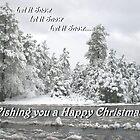 Let it Snow, Let it Snow...... by Martina Fagan