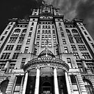 The Royal Liver Building, Liverpool by Robin Whalley