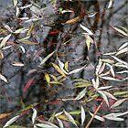 Fallen Leaves by Alison Malcolm Flower