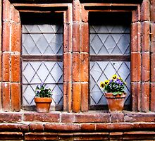 Italy - Windows and Flowerpots II by cbjphoto