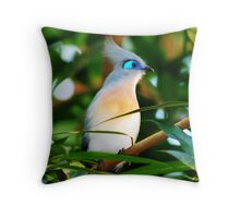 BLUE EYE MAKE-UP II Throw Pillow