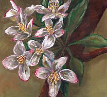 Blossoms on Tree Branch by Gayle Utter