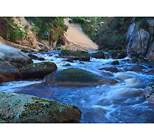 Interview River by Michael Firkins by Tarkine Trails Tasmania