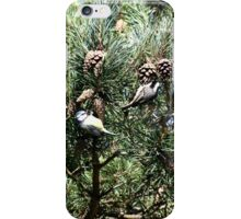 Seed collectors iPhone Case/Skin