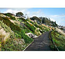 Langmoor-Lister Gardens ~ Lyme Regis Photographic Print