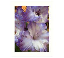 Abundant Lillies Art Print