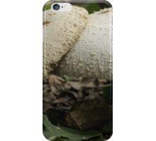 Intimate Mushrooms  iPhone Case/Skin
