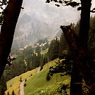 Les Alpes Suisse by Laura Dandaneau
