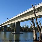 Robinvale - Euston Bridge by Leanne Nelson