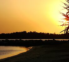 Golden Pandanas Bay by Martice