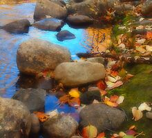 Autumn Down by the Creek by Tara  Turner