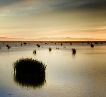 Santa Clara River, Two by -Wink-