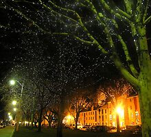 Salamanca Nights - Hobart, Tasmania by Deanna Roberts Think in Pictures