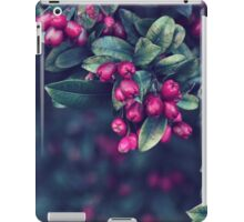 Ordinary Evening iPad Case/Skin