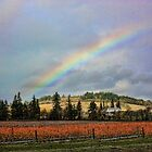 A Beautiful Rainbow  by Maria warren