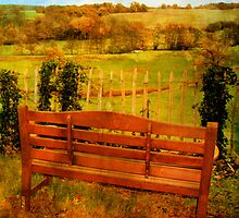 behind the church bench by Sonia de Macedo-Stewart