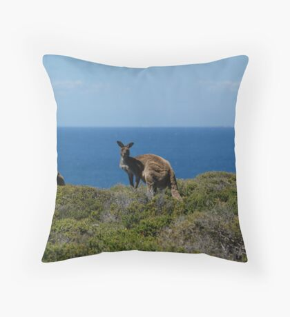 Curious Kangaroos  Throw Pillow