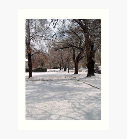 Snow-covered Yards Art Print
