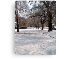 Snow-covered Yards Canvas Print