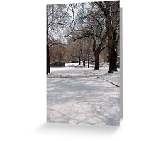 Snow-covered Yards Greeting Card