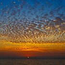Florida Sky III by deahna