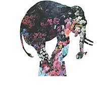 Floral Elephant Photographic Print