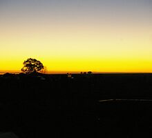 Sunset at Boulia Camel races by julz