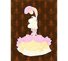 Marie Antoinette Photographic Print