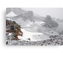 Inside the Snowdome Canvas Print